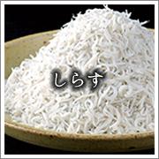 shirasu